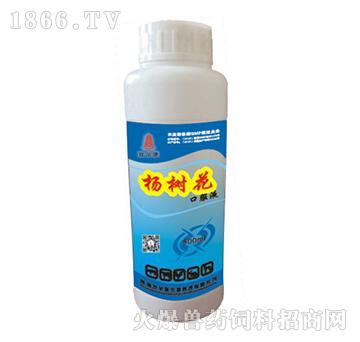 杨树花口服液-治疗禽肠