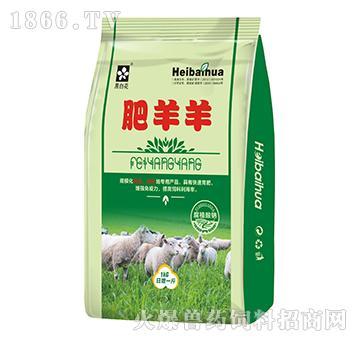 肥羊羊-促进胎儿发育,骨骼生长