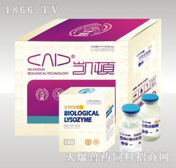 生物溶菌酶-后备母猪,母猪产前产后不吃食,产后修复专用