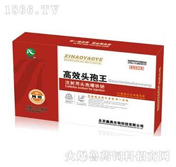 高效头孢王-主治猪肺疫、猪丹毒、盆腔炎、产后综合症