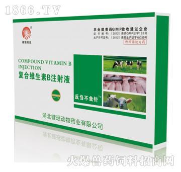 复合维生素B注射液-用于前胃驰缓、瘤胃积食、瓣胃阻塞