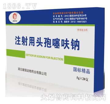 注射用头孢噻呋钠-主治传染性胸膜肺炎、副嗜血杆菌、肺疫
