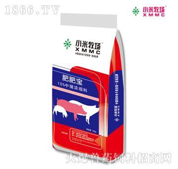 肥肥宝10%中猪浓缩料