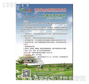 科金立康源-枯草芽孢杆菌粉