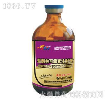 盐酸林可霉素注射液-主