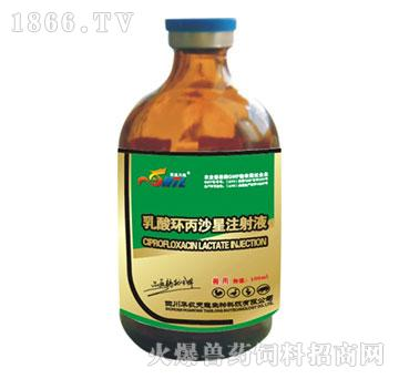 乳酸环丙沙星注射液-用