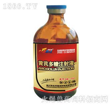黄芪多糖注射液-适用于