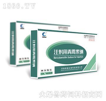 注射用青霉素钠-主要用于革兰氏阳性菌感染,亦用于放线菌及钩端螺旋体等的感染