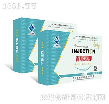 青霉素钾-用于革兰氏阳性菌引起的感染性疾病