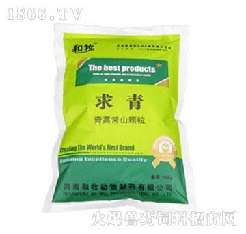 求青-青蒿常山颗粒-清热,凉血,止痢,主治鸡球虫病