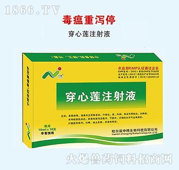 穿心莲注射液-毒瘟重泻停-主治仔猪红痢、黄痢、白痢、仔猪水肿病
