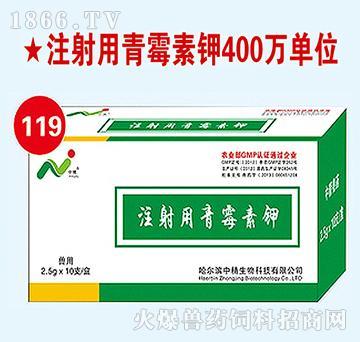 中精注射用青霉素钾-用于革兰氏阳性菌感染