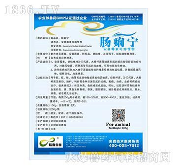 肠痢宁-用于治疗红痢、黄痢、白痢、血痢等病症