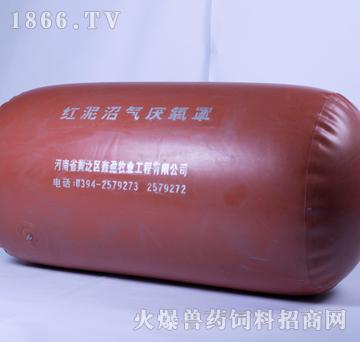 红泥沼气厌氧罩