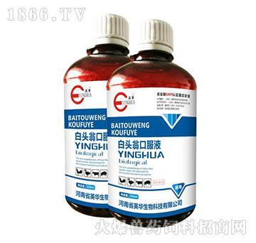 白头翁口服液-用于肠毒综合症引起的采食量下降