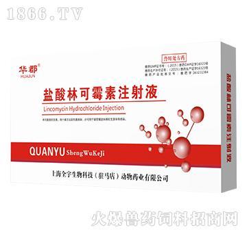 2ml盐酸林可霉素注射液-用于革兰氏阳性菌感染