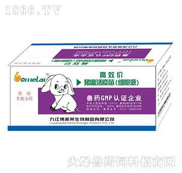 高效价猪瘟活疫苗-用于
