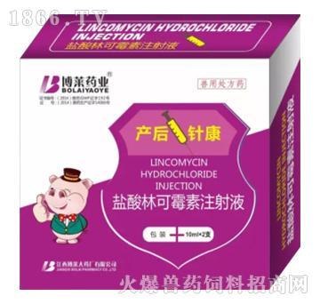 产后壹针康-产道厌氧菌