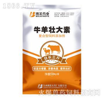 牛羊壮大素-改善瘤胃环