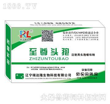 至尊头孢-用于各种原因引起的畜禽全身性感染