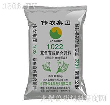 草鱼育成后期配合饲料1022-减少脂肪肝病发生,提高草鱼的免疫力