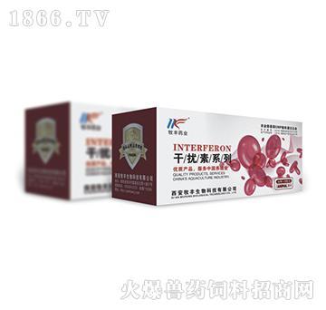 猪专用干扰素-具有广谱抗病毒作用、针对猪瘟病毒、细小病毒、蓝耳病毒、圆环病毒