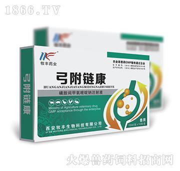 弓附链康-治疗混合感染:本品用于治疗无名高热、弓形体、血液原虫病(附红细胞体)