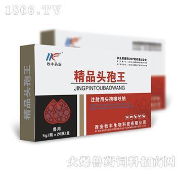 精品头孢王-用于各种原因引起的畜禽严重感染性疾病的防治