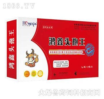 鸿鑫头孢王-主治各种细菌、病毒引起的发热、高烧不退、重度感染