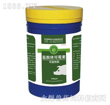 林可霉素可溶性粉-用于治疗猪和鸡的革兰氏阳性菌感染