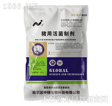 猪用活菌制剂-有效防止仔猪腹泻