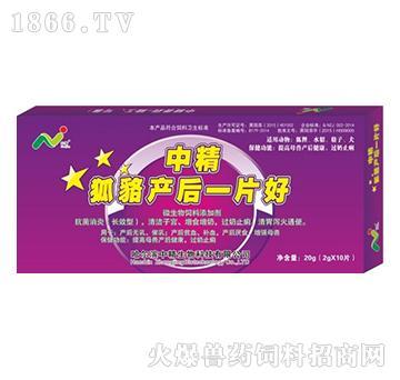 中精狐貉貂产后一片好-适用于产后体虚、乳房炎、阴道炎
