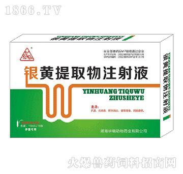 银黄提取物注射液-主治母畜产后顽固性高烧,食欲不振及病畜的康复期间调理恢复