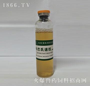 牛巴氏速抗(加强型)-疗牛巴氏杆菌的首选特效产品