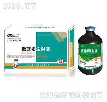 板蓝根注射液-主治各种热毒症,炎毒症,败毒症