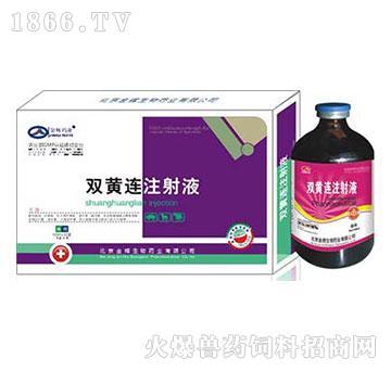 双黄连注射液-用于外感风热引起的发热、咳嗽、气喘