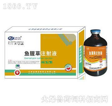鱼腥草注射液-主治单独感染或混合感染及其它原因引起的高烧、高热
