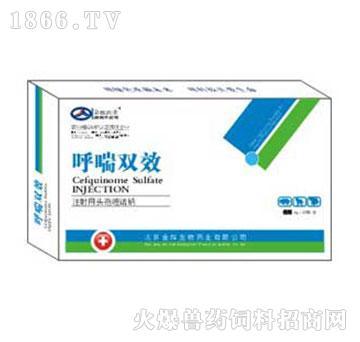 呼喘双效-主治全身性感染及呼吸道、消化道、泌尿生殖感染