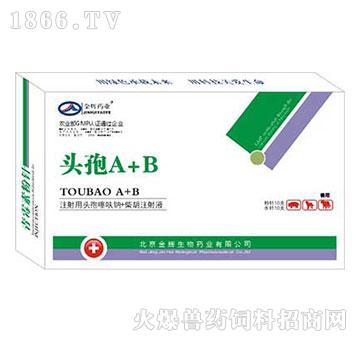 头孢A+B-全身性感染及重症感染用什么药