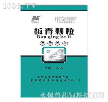 板青颗粒-清热解毒、消肿散结、强心利尿利胆、抗菌消炎、抗病毒