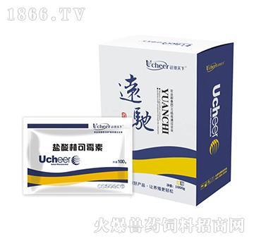 炎康-盐酸林可霉素(牛