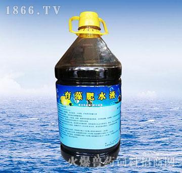 育藻肥水液-培优水色、平衡菌相藻相、修复底质