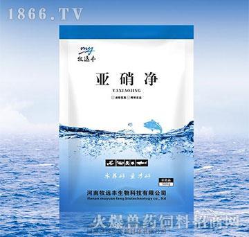 亚硝净-速除氨氮、降解亚盐