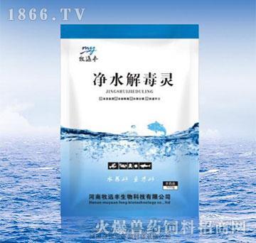 净水解毒灵-消除消毒剂残留、消除水体重金属离子