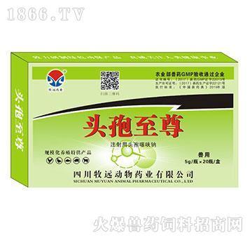 头孢**-治疗全身重症感染、烈性、菌毒性感染