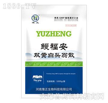 鳗福安(猪药)-清热解毒、凉血止痢