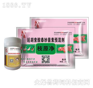 枝原净-用于治疗猪支原
