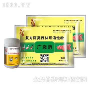 广炎消-用于对阿莫西林