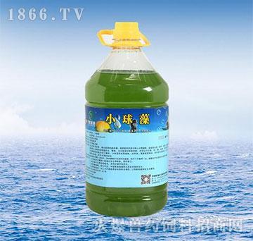 小球藻-天然藻种、培水增氧、晴雨两用、快速肥水
