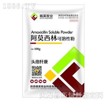 头孢杆康-主治肝周炎、心包炎、腹膜炎、卵黄性腹膜炎